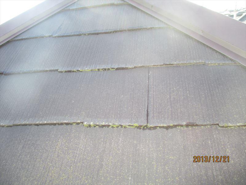 スレート屋根の苔2