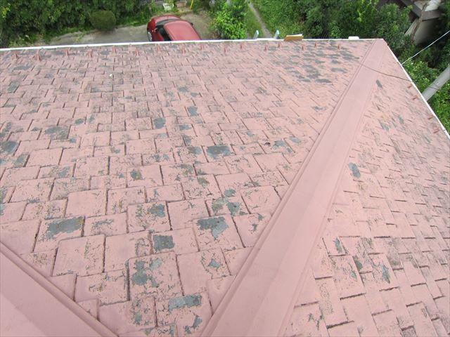 平板瓦の塗膜の剥離3