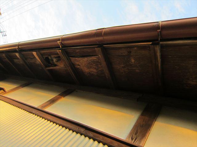 屋根下地補修工事
