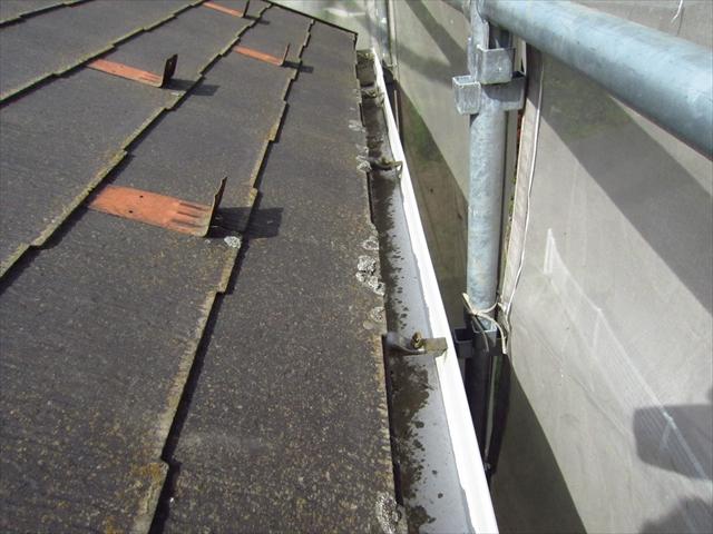 屋根高圧洗浄前2