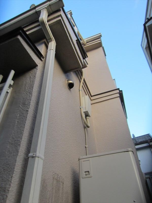 外壁北側の苔