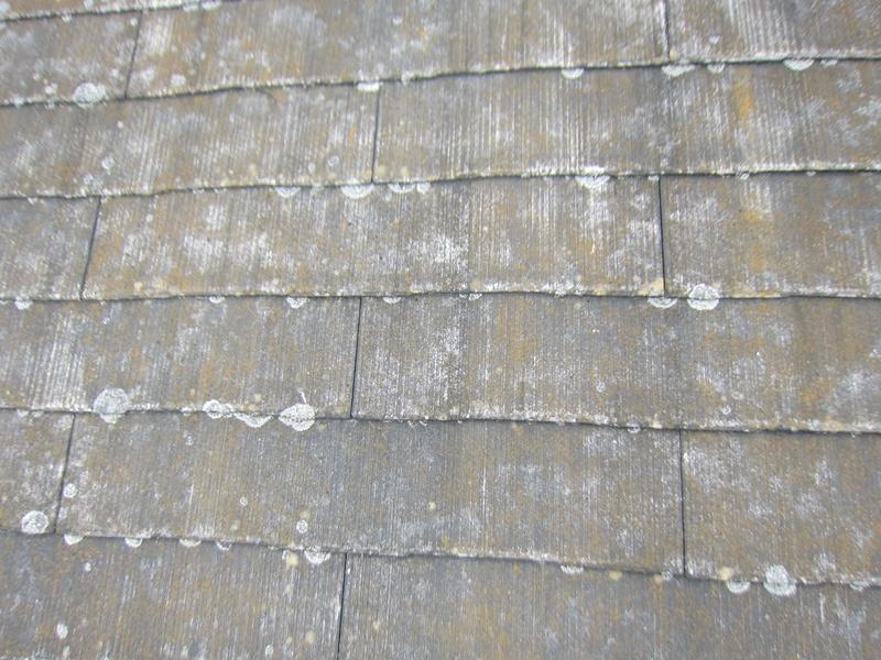 スレート屋根洗浄前