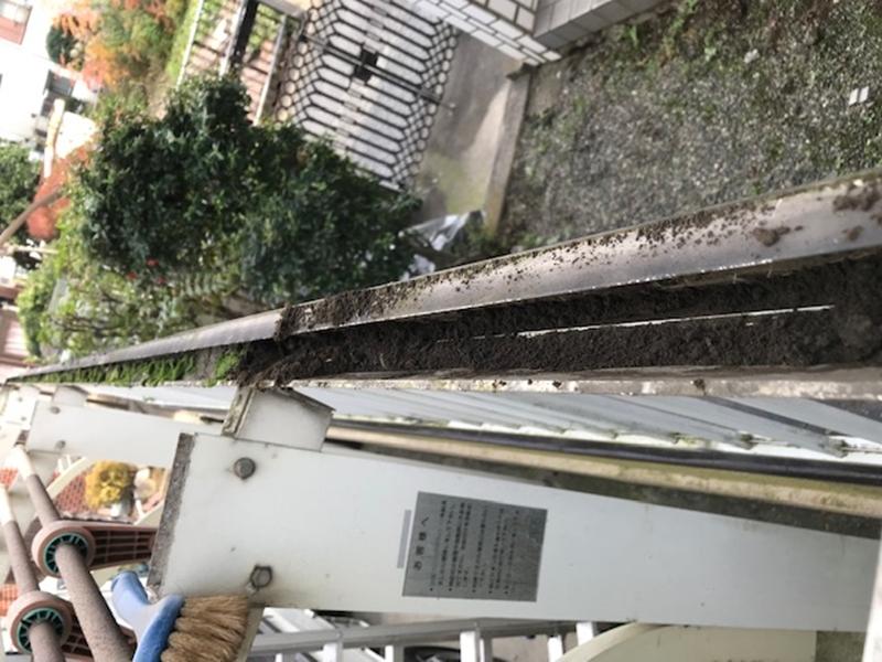 ごみいっぱいのカーポート屋根柵