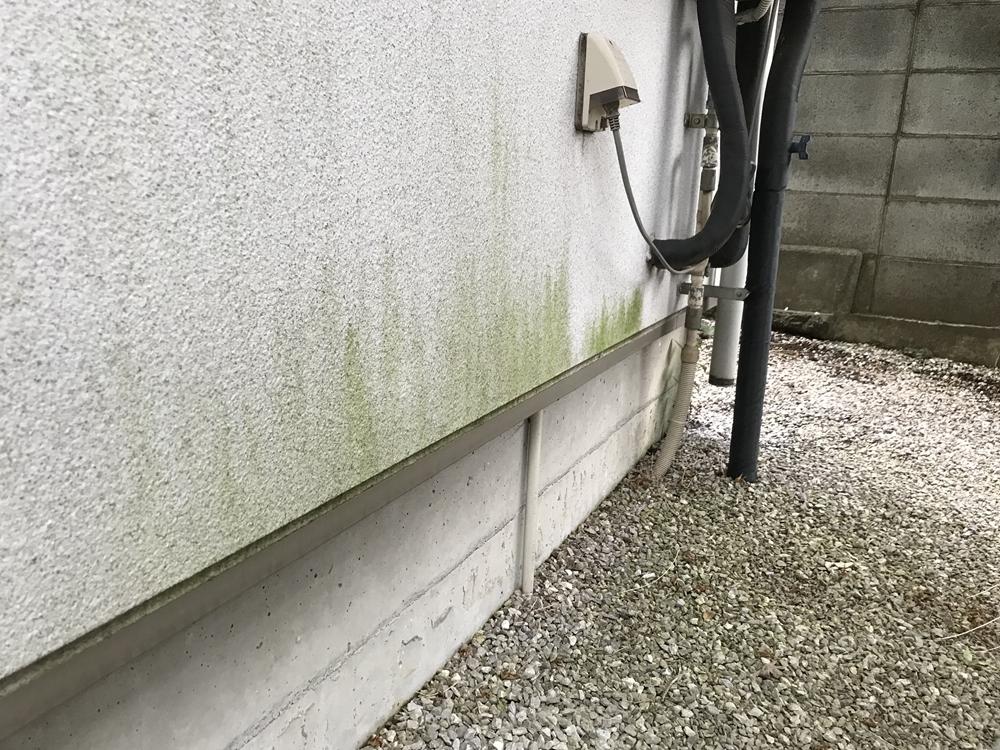 コンクリ外壁の湿気による苔