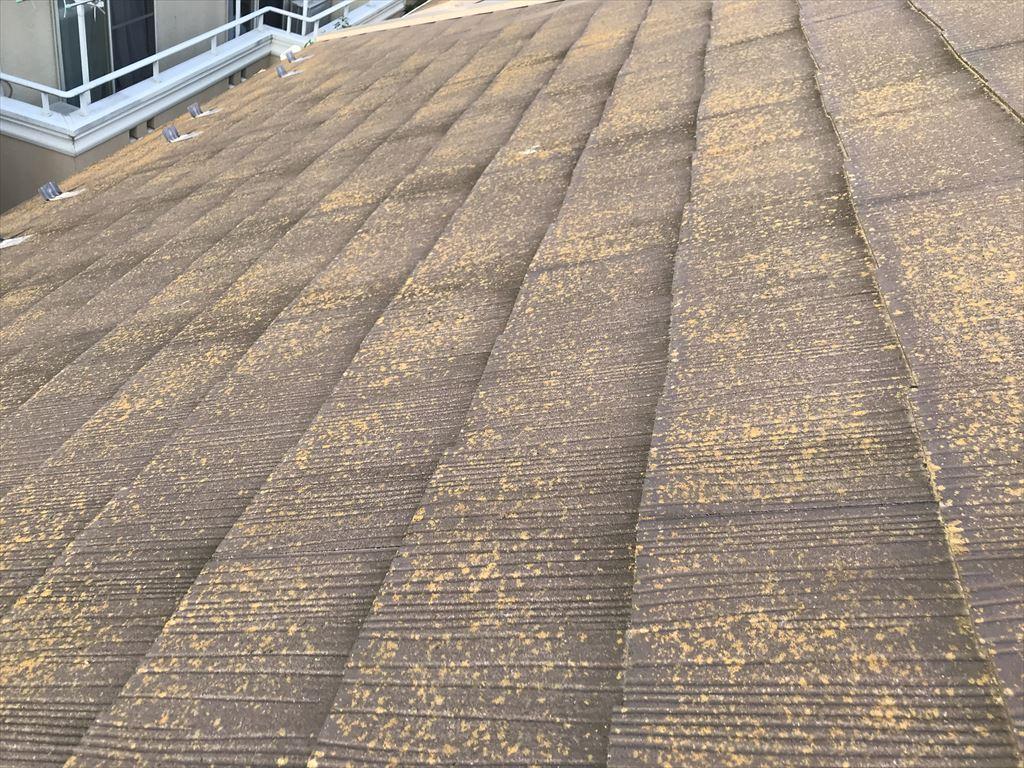 上尾市劣化したスレート瓦屋根の発生した苔カビ