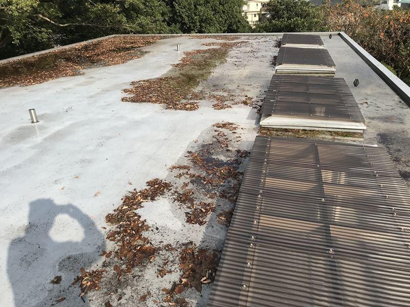 陸屋根の清掃前