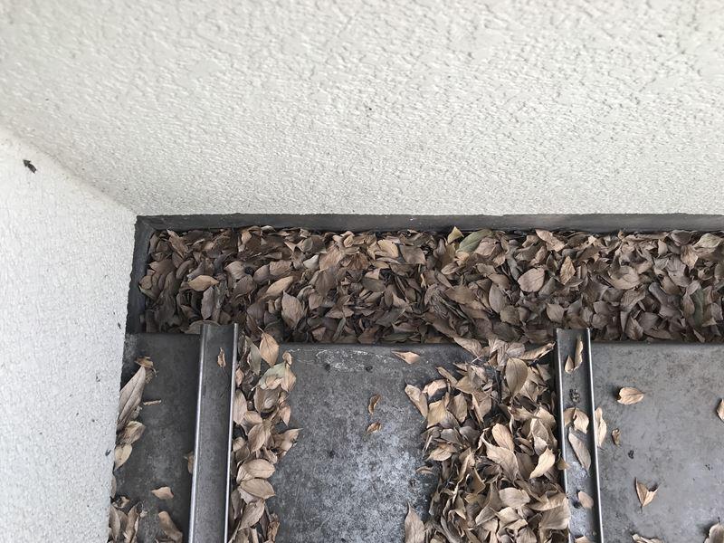 枯葉詰り樋