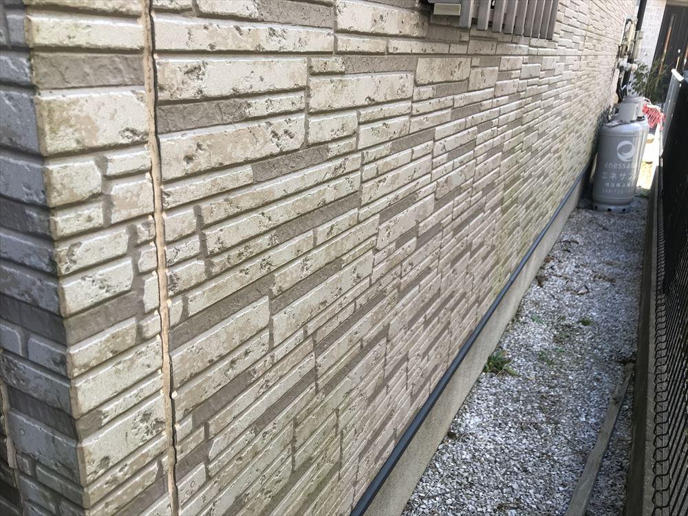 上尾市のサイディング外壁北面に緑色の苔