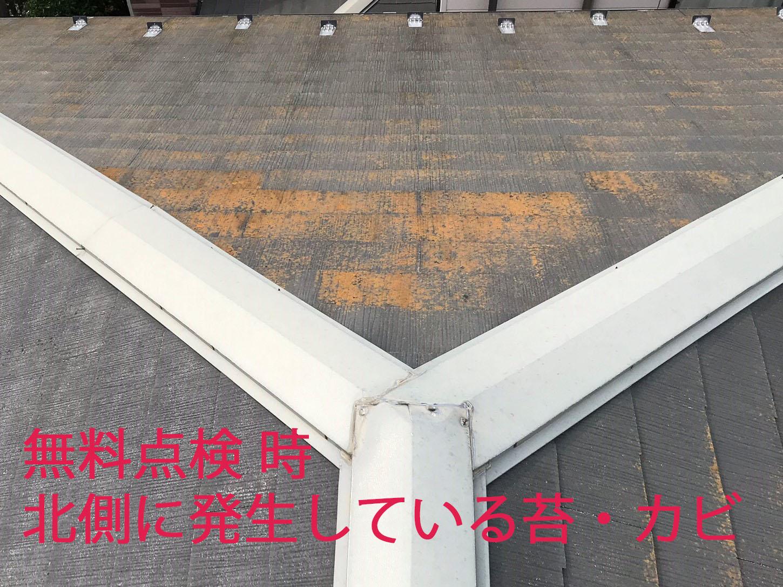 上尾市スレート屋根無料点検時の北側のカビ苔