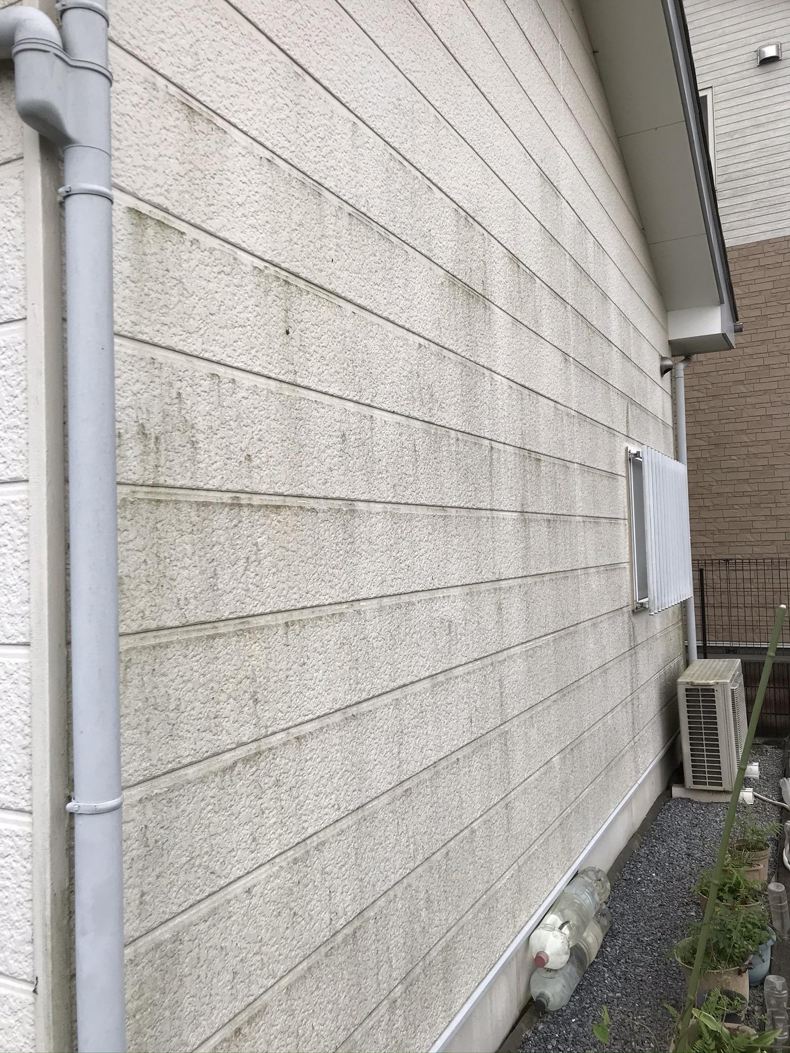 蓮田市北側サイディング外壁のコケカビ