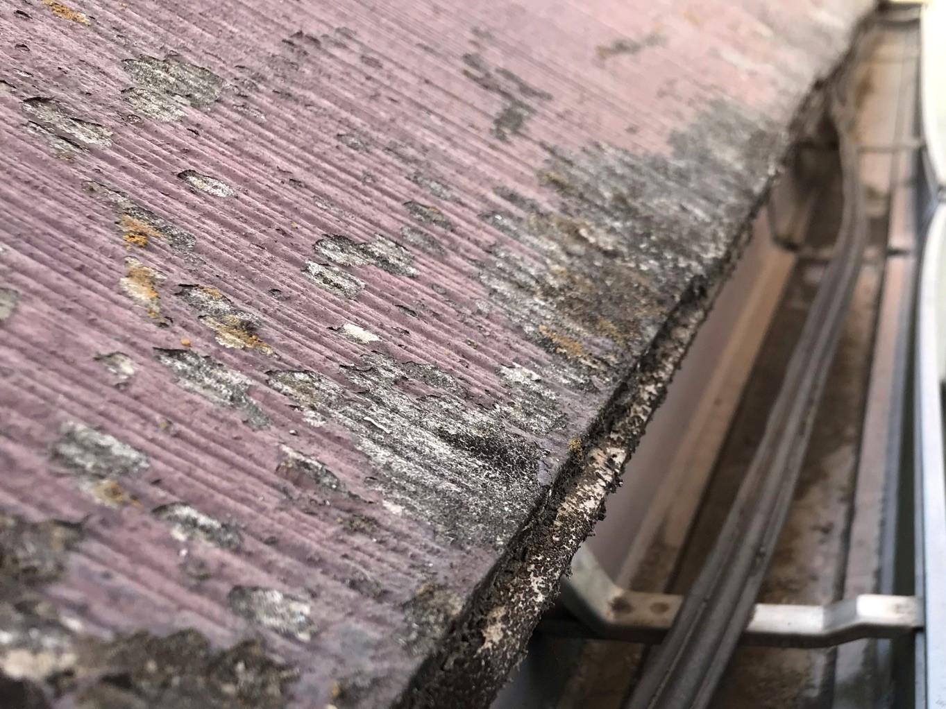 伊奈町の賃貸一軒家無料点検時の屋根状態