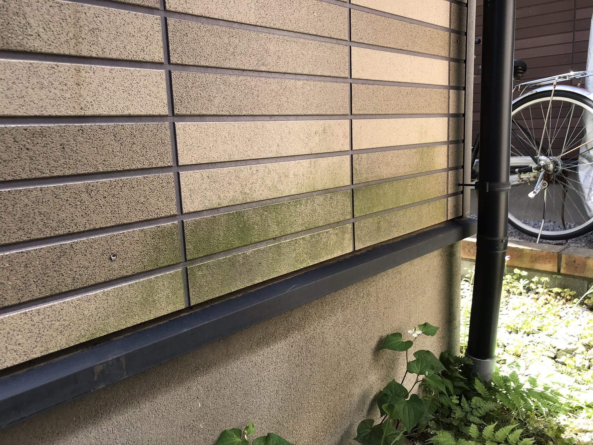 上尾市サイディングボード下部に発生した緑の苔